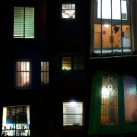 9th February - Branch 3D shows The Window Series